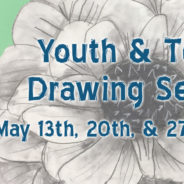 Youth & Teen Drawing Series